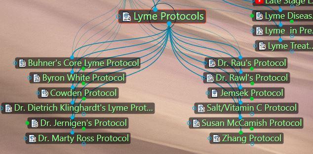 Lyme protocols
