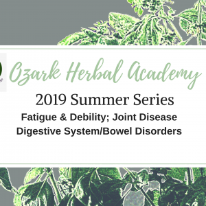 Summer Herb Course Series