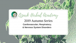Autumn course series