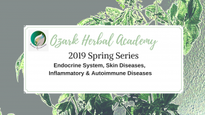 spring herb class series